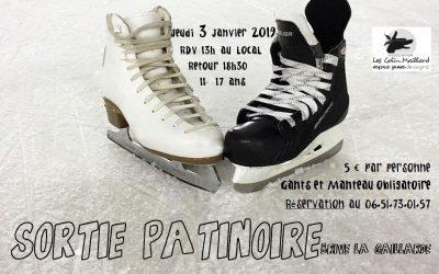 Sortie Patinoire le 3 Janvier